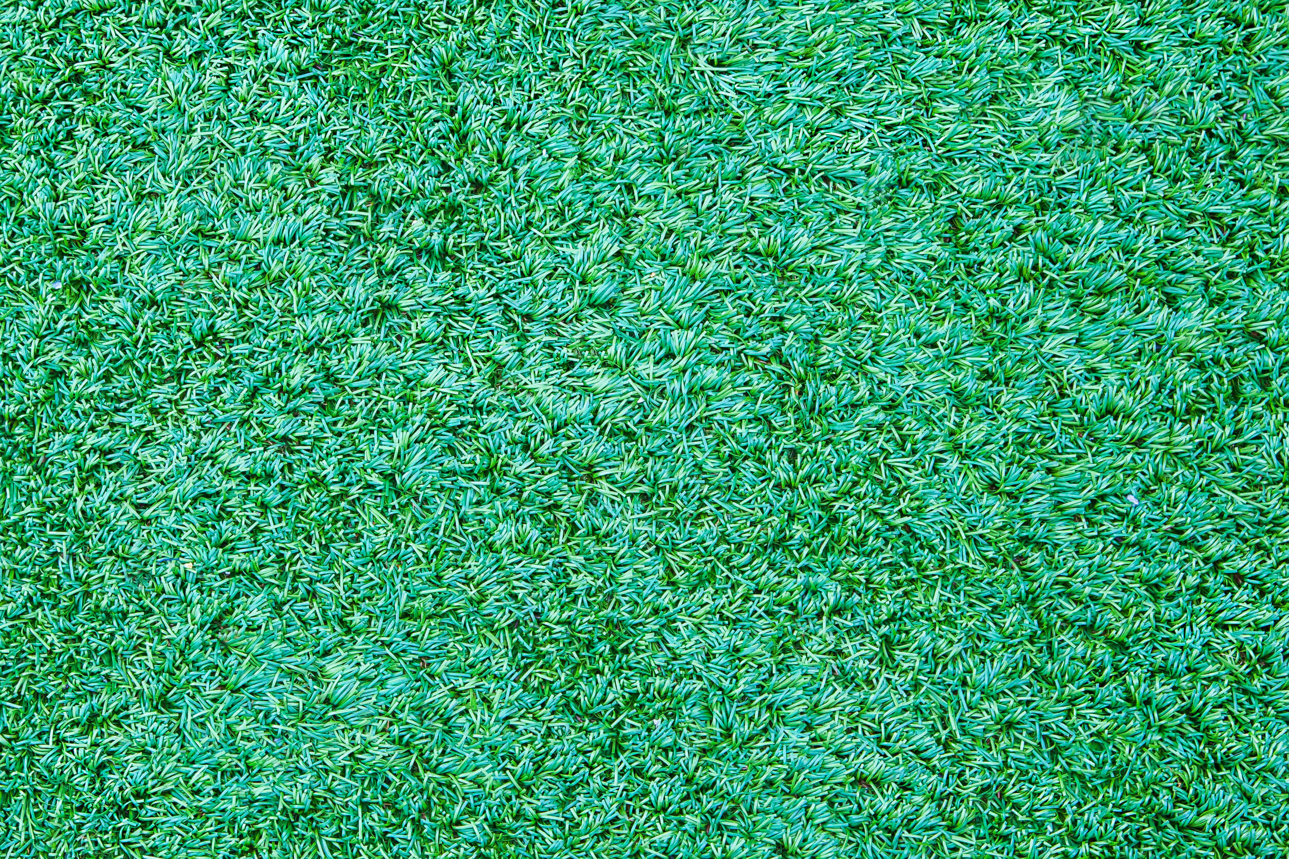 Artificial Turf Essex